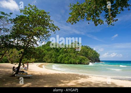 Jamaica Port Antonio Tropical landscape at Frenchmans Cove beach - Stock Image