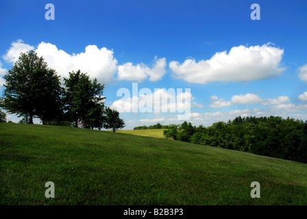 Summer day on a rolling hill in Kentucky. - Stock Image