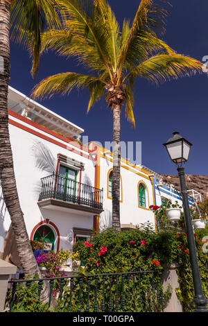 House and palm tree at Puerto de Mogan, Gran Canaria, Canary Islands - Stock Image