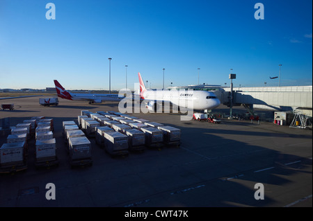 Qantas aircraft at Brisbane Domestic Terminal Australia - Stock Image