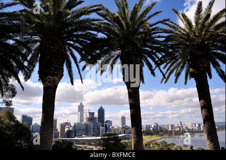 Perth skyline, viewed from King's Park. Western Australia - Stock Image