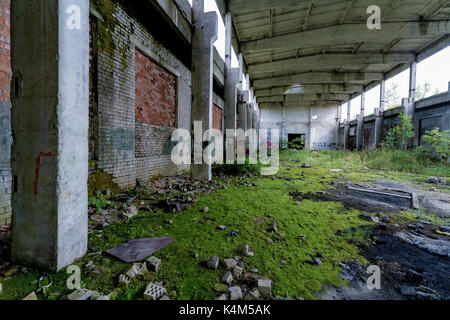Abandoned factory covered in green moss - Stock Image
