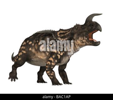 dinosaur Einiosaurus - Stock Image