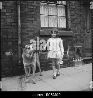 Girl and dog, Middleport, Burslem, Stoke-on-Trent, Staffordshire, 1965-1968. A young girl and an Alsatian dog standing on the pavement outside a terraced house. The exact location of this image is unidentified, but it may have been taken on Albion Street (later Harper Street), now demolished. - Stock Image