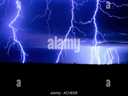 Electric Blue - Stock Image