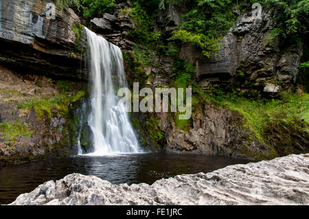 Thornton Force on the River Twiss, Ingleton Waterfalls Trail, Ingleton in the Yorkshire Dales National Park, North - Stock Image