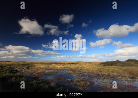 Holme Next The Sea marshes at Dunes nature Reserve. - Stock Image