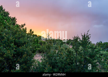 Sunset in Santa Fe, New Mexico mountains in Tesuque community neighborhood with green plants and colorful storm sky clouds - Stock Image