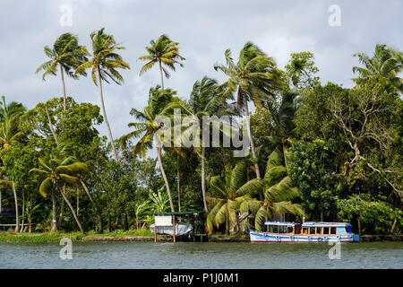 A boat moored in the Alappuzha (or Alleppey) backwaters, Kerala State, India. - Stock Image