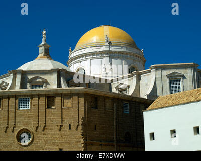 Dome of Cadiz Cathedral - Stock Image