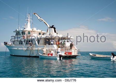 A charter fishing vessel based out of Gladstone out on calm waters of Swains Reef on the southern end of the Great - Stock Image