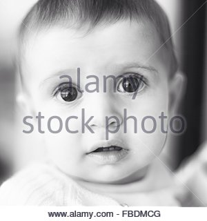 Portrait Of Baby At Home - Stock Image