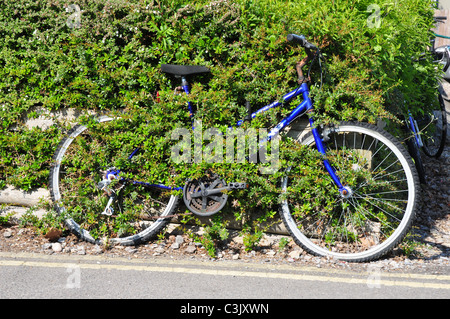 Abandoned bicycle with vegetation grwoing through frame, Seacourt Park & Ride, Oxford, Oxfordshire - Stock Image