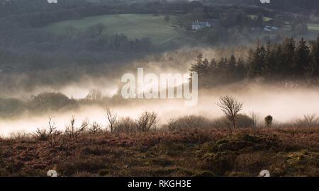 Mist rising out of the Dart valley near Buckland Beacon Dartmoor Devon Uk - Stock Image