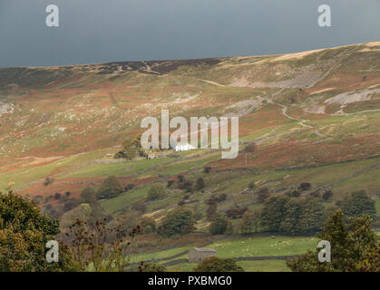 Yorkshire Dales National Park autumn landscape, Fremington Edge, Reeth, Swaledale, UK - Stock Image
