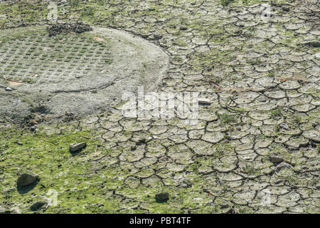 Drying mud of a river bed. - Stock Image