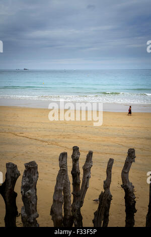 Barrier of wooden posts on a beach, Saint-Malo, Brittany, France. - Stock Image