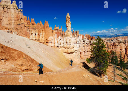 Couple hiking in the mesmerising environment of Bryce Canyon National Park, Utah, on a bright sunny day. - Stock Image
