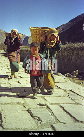 Nepalese women and child carry baskets of apples with head bands to Marpha in Kali Gandaki valley Annapurna circuit - Stock Image