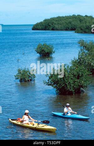 Florida Keys No Name Key Bogie channel couple kayaks near mangroves - Stock Image