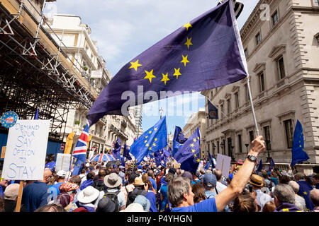 London, UK. 23rd June 2018. March for a Peoples Vote.  On Pall Mall EU flags fly as the demonstaration finally starts to move at 1.45pm. Credit: Scott Hortop/Alamy Live News. - Stock Image