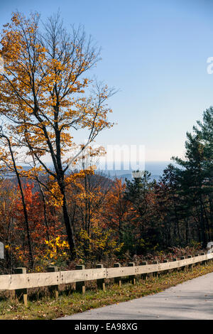 Timber safety rail along park road in Nantahala National Forest near Gorges State Park near Cashiers, North Carolina, - Stock Image