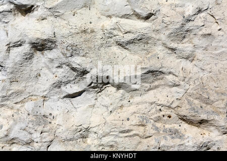 The old sandstone wall forms the background - Stock Image