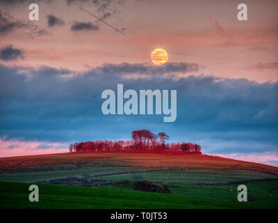 Minning Low Neolithic cairn, Derbyshire, UK. 20th Mar, 2019. Supermoon & equinox, rare lunar phenomenon of the large super worm moon coinciding with spring equinox Minninglow hill Historic England monument with a chambered tomb & two bowl barrows Credit: Doug Blane/Alamy Live News - Stock Image