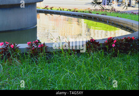 Part of the fountain with lawn and pond in front of the Sea station in Genoa, the water reflects the sunlight. - Stock Image