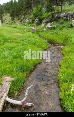 Creek Runs Through Grasses at Bottom of Hill - Stock Image