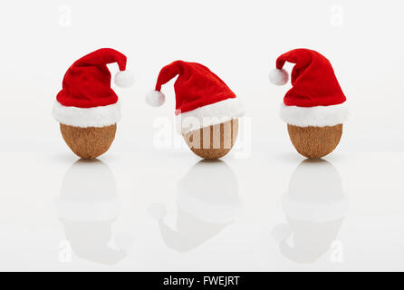 Coconuts  with Christmas hats - Stock Image
