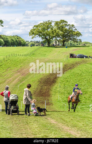 Rockingham Castle, Corby, UK. 21st May, 2017. Rebecca Pugh and her horse Master Tarka are watched by a family on - Stock Image
