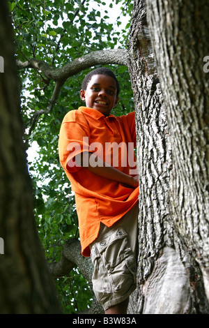 Smiling African American boy climbing a tree - Stock Image