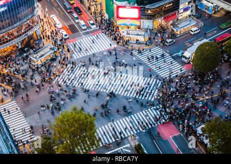 Elevated view of famous Shibuya pedestrian crossing, Tokyo, Japan - Stock Image