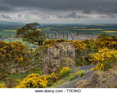 Cliff Rigg on the North York Moors, Great Ayton, North Yorkshire, UK. 7th May 2019. UK Weather: Periods of heavy rain and showers sweeping across the North York Moors. Credit: Gary Clarke/Alamy Live News - Stock Image