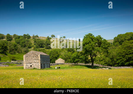 UK, Yorkshire, Wharfedale, Hubberholme, agriculture, traditional stone field barn in hay meadow - Stock Image