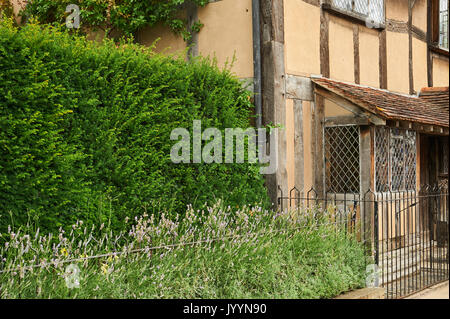 William Shakespeare's birthplace in the centre of Stratford upon Avon - Stock Image