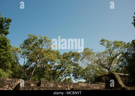 Birds circle the ancient Mayan ruins at Cahal Pech, western Belize. - Stock Image