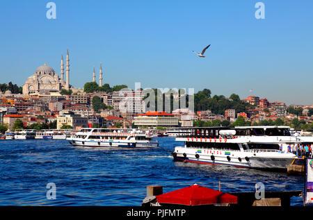 Turkey, Istanbul (Fatih municipality) Eminonu quarter, the Golden horn and the Suleymaniye mosque - Stock Image