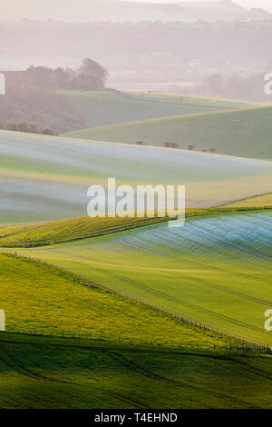 Spring sunrise in South Downs National Park, West Sussex, England. - Stock Image
