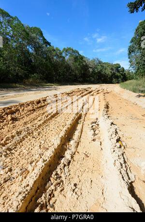 Muddy and rutted dirt road to Chilli Beach, Cape York Peninsula, Far North Queensland, FNQ, QLD, Australia - Stock Image