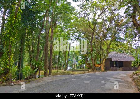 Khao Lak Lam Ru National Park, Khao Lak, Thailand - Stock Image
