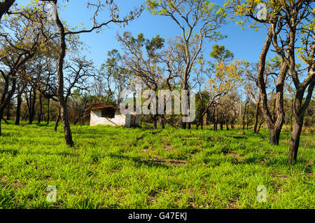 an abandoned hovel in a countryside of Brazil - Stock Image