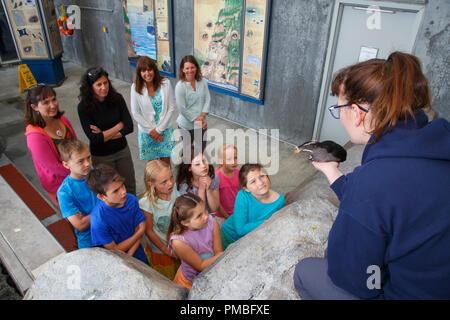 Kids at the Alaska SeaLife Center.  Seward, Alaska. - Stock Image