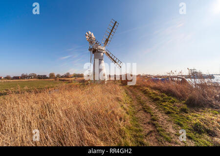 view of thurne mill on the norfolk broads uk - Stock Image