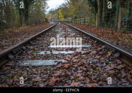 Railway Track, Matlock - Stock Image