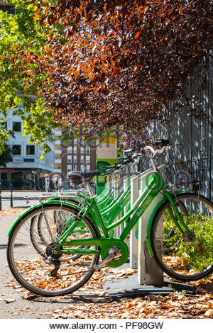 Bike sharing cycling rack dock during summer in Piacenza, Italy - Stock Image