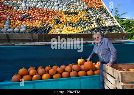Slindon Village, West Sussex, UK. 29th September 2018. Robin Upton stands in front of his pumpkin display, opening next week, which this year commemorates the hundredth anniversary of the RAF, the centenary of the Armistice and his family's 50 years of growing pumpkins. It runs from October to November (peaking around Halloween) and comprises of around 100 different varieties of pumpkin and squash.Credit Gary Blake/Alamy Live News - Stock Image
