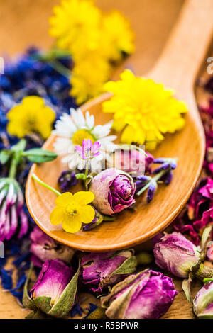 Flowers in a spoon. - Stock Image