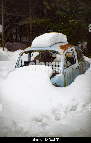 A 1960 Volkswagen Beetle, burried in the snow, in a wooded area, in Noxon, Montana.  This image was shot with an antique Petzval lens and will show si - Stock Image